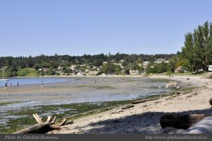 lowtide-Cadboro-Bay-2-2011-07-30-Cadboro-Bay-Beach-view